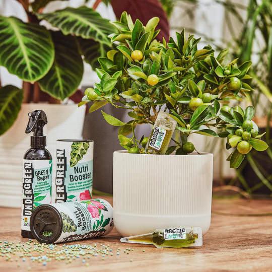 UNDERGREEN Schnelle Hilfe für kaputte Pflanzen