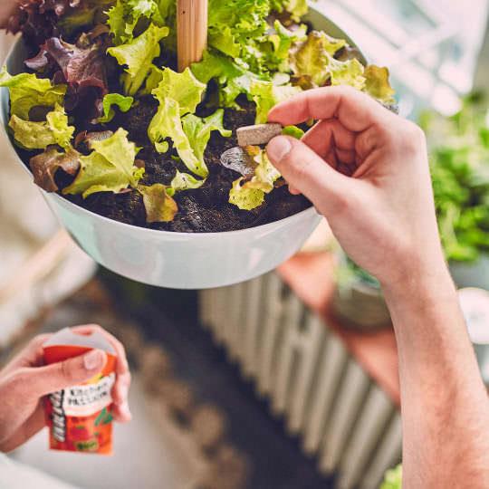 UNDERGREEN Dünger Pellets für Kräuter, Obst, Gemüse